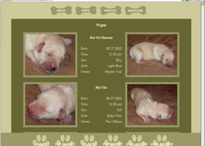 Gabbi.com Website Sample